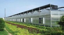 IOTACS农业大棚温室智能化自动控制系统方案